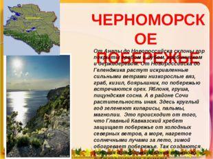 ЧЕРНОМОРСКОЕ ПОБЕРЕЖЬЕ От Анапы до Новороссийска склоны гор покрыты грабом и