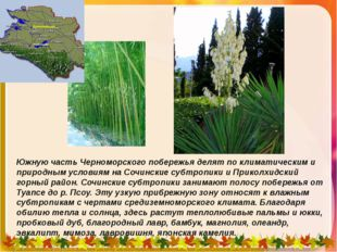 Южную часть Черноморского побережья делят по климатическим и природным услови