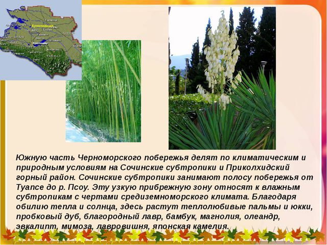 Южную часть Черноморского побережья делят по климатическим и природным услови...