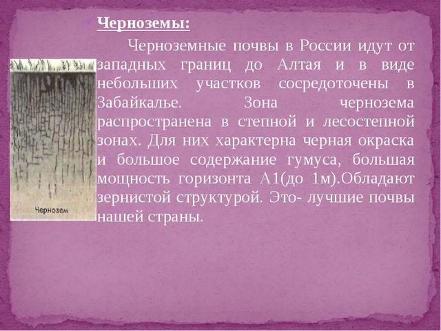 Черноземы: Черноземные почвы в России идут от западных границ до Алтая и в...