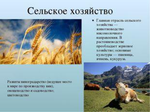 Сельское хозяйство Главная отрасль сельского хозяйства — животноводство мясом