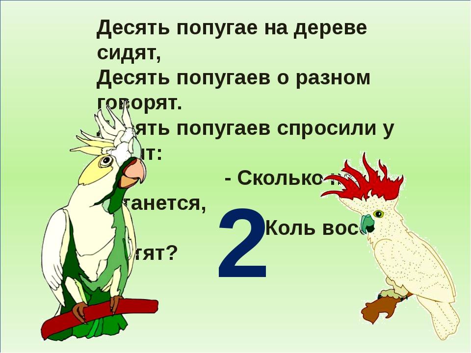 Десять попугае на дереве сидят, Десять попугаев о разном говорят. Десять поп...