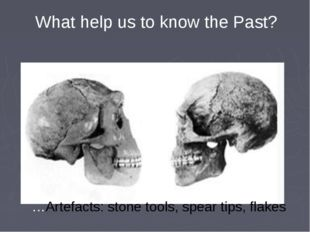 What help us to know the Past? …Artefacts: stone tools, spear tips, flakes