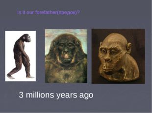 Is it our forefather(предок)? 3 millions years ago