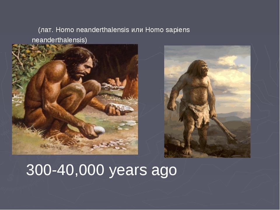 (лат. Homo neanderthalensis или Homo sapiens neanderthalensis) 300-40,000 ye...