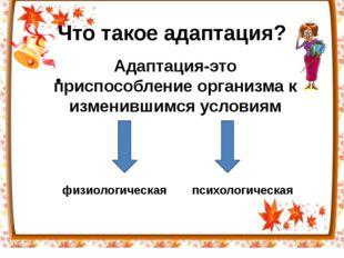 Что такое адаптация? Адаптация-это перестройка организма на работу в измени