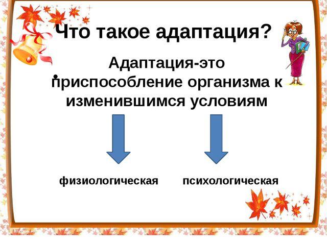 Что такое адаптация? Адаптация-это перестройка организма на работу в измени...