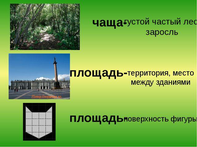 чаща- территория, место между зданиями поверхность фигуры густой частый лес;...
