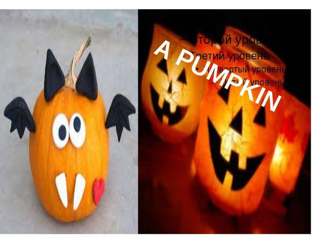 A pumpkin A PUMPKIN