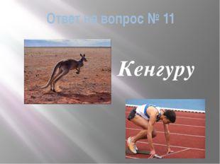 Ответ на вопрос № 11 Кенгуру