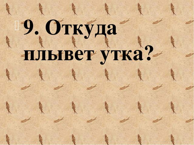 9. Откуда плывет утка?