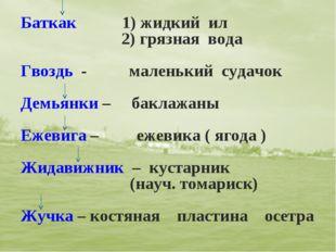 Баткак 1) жидкий ил 2) грязная вода Гвоздь - маленький судачок Демьянки – бак