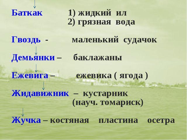 Баткак 1) жидкий ил 2) грязная вода Гвоздь - маленький судачок Демьянки – бак...