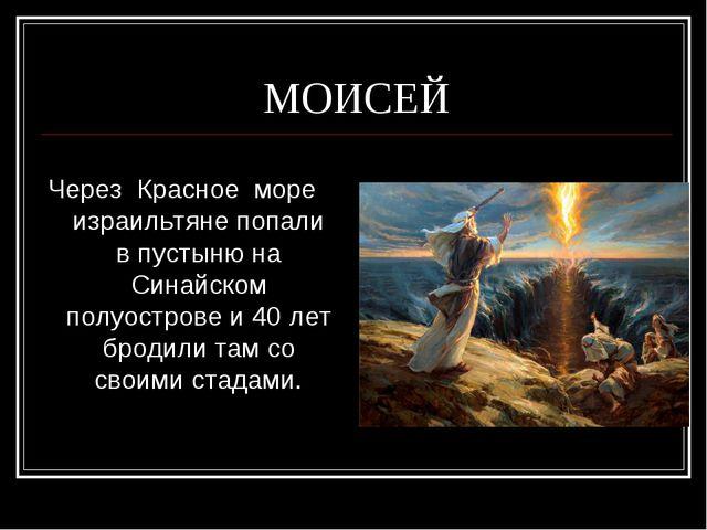 МОИСЕЙ  Через Красное море израильтяне попали в пустыню на Синайском полуост...