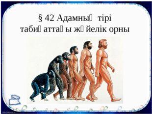 § 42 Адамның тірі табиғаттағы жүйелік орны