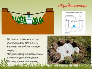 «Конденсатор» На самом солнечном месте выкопать яму 50 х 50 х 50 В центр пос