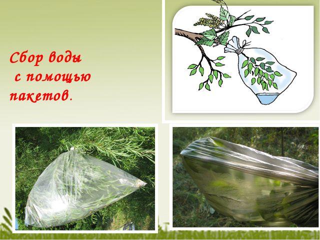Сбор воды с помощью пакетов.