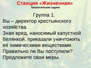 Станция «Жизненная» Биологические задачи Группа 1: Вы – директор крестьянског
