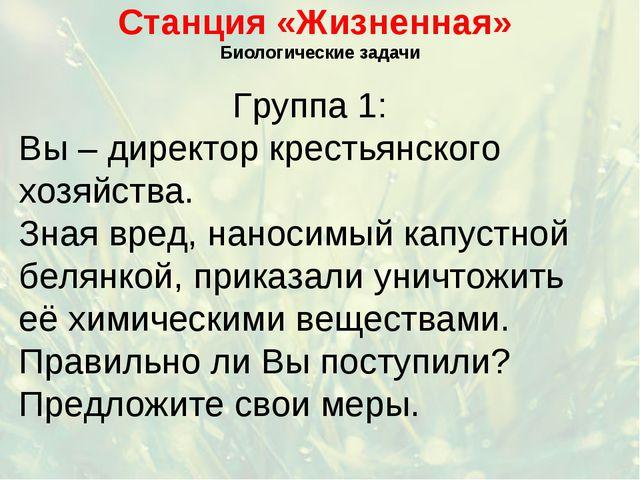 Станция «Жизненная» Биологические задачи Группа 1: Вы – директор крестьянског...