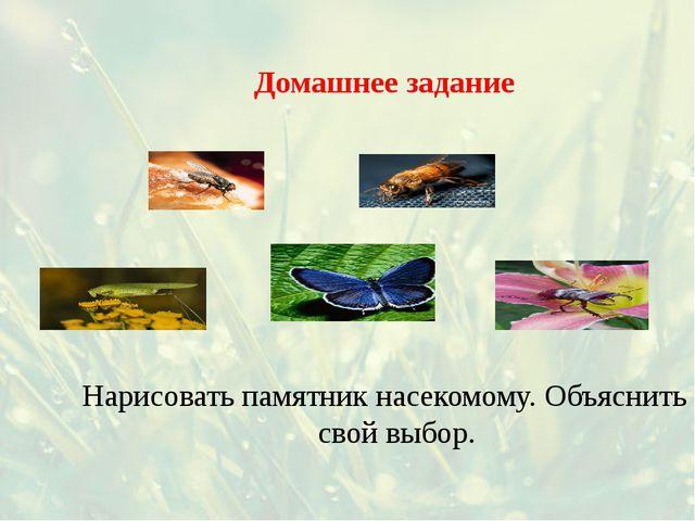 Домашнее задание Нарисовать памятник насекомому. Объяснить свой выбор.