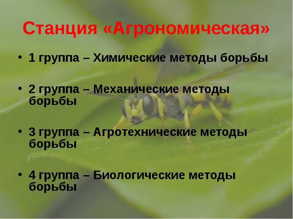 Станция «Агрономическая» 1 группа – Химические методы борьбы 2 группа – Механ...