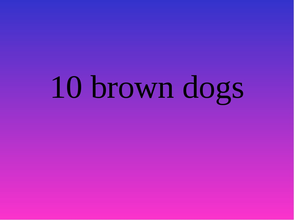 10 brown dogs