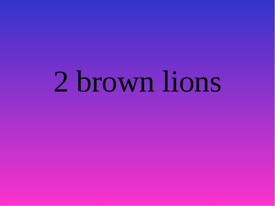 2 brown lions