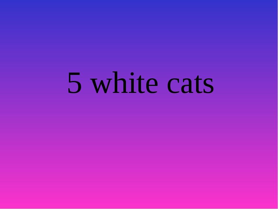 5 white cats
