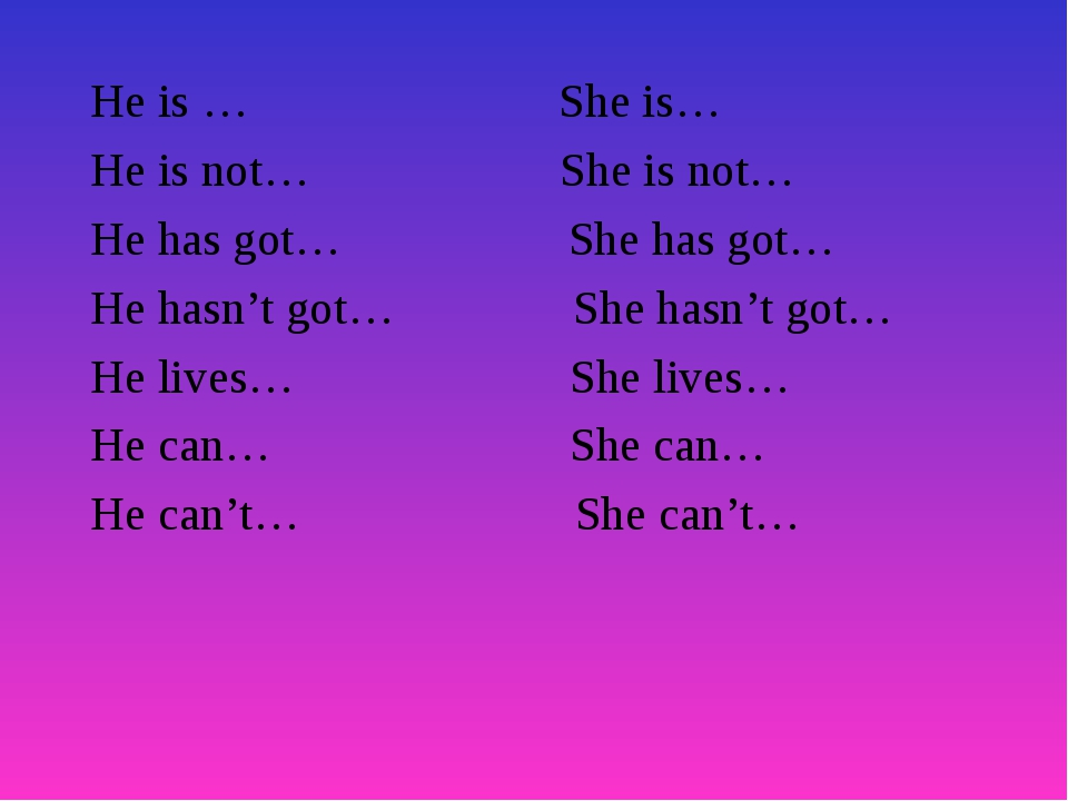 He is … She is… He is not… She is not… He has got… She has got… He hasn't got...