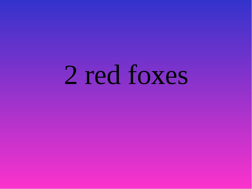 2 red foxes