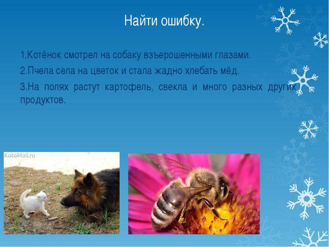 Найти ошибку. 1.Котёнок смотрел на собаку взъерошенными глазами. 2.Пчела села...