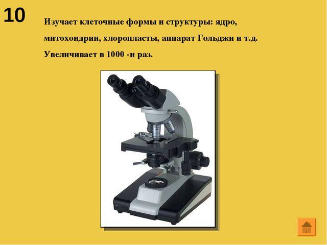 10 Изучает клеточные формы и структуры: ядро, митохондрии, хлоропласты, аппар...