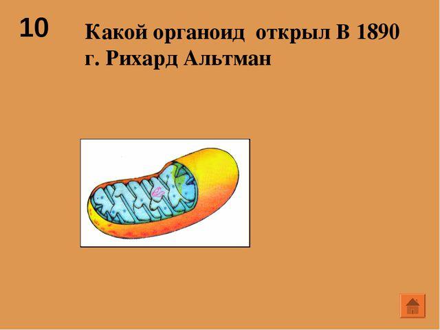 10 Какой органоид открыл В 1890 г. Рихард Альтман