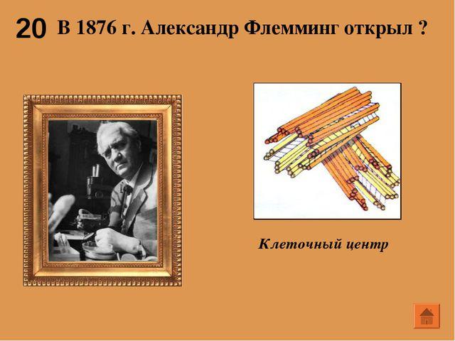 20 В 1876 г. Александр Флемминг открыл ?