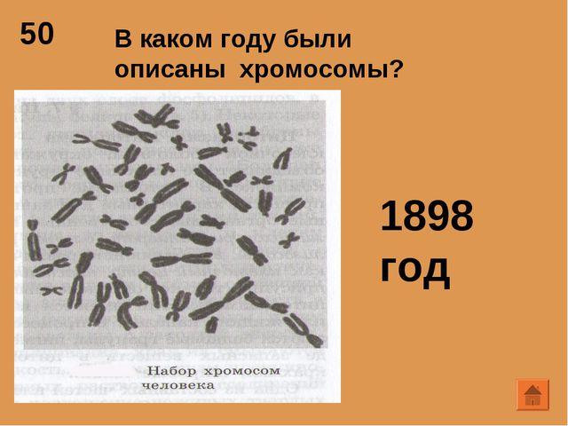 50 В каком году были описаны хромосомы? 1898 год