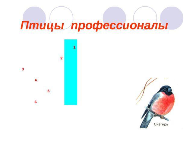 Птицы профессионалы 1 2 3...