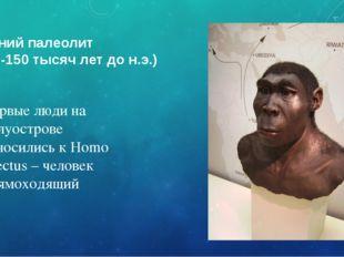 Ранний палеолит (650-150 тысяч лет до н.э.) Первые люди на полуострове относи
