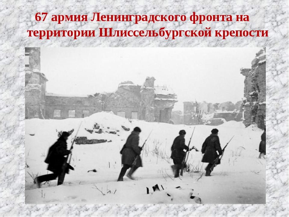 67 армия Ленинградского фронта на территории Шлиссельбургской крепости