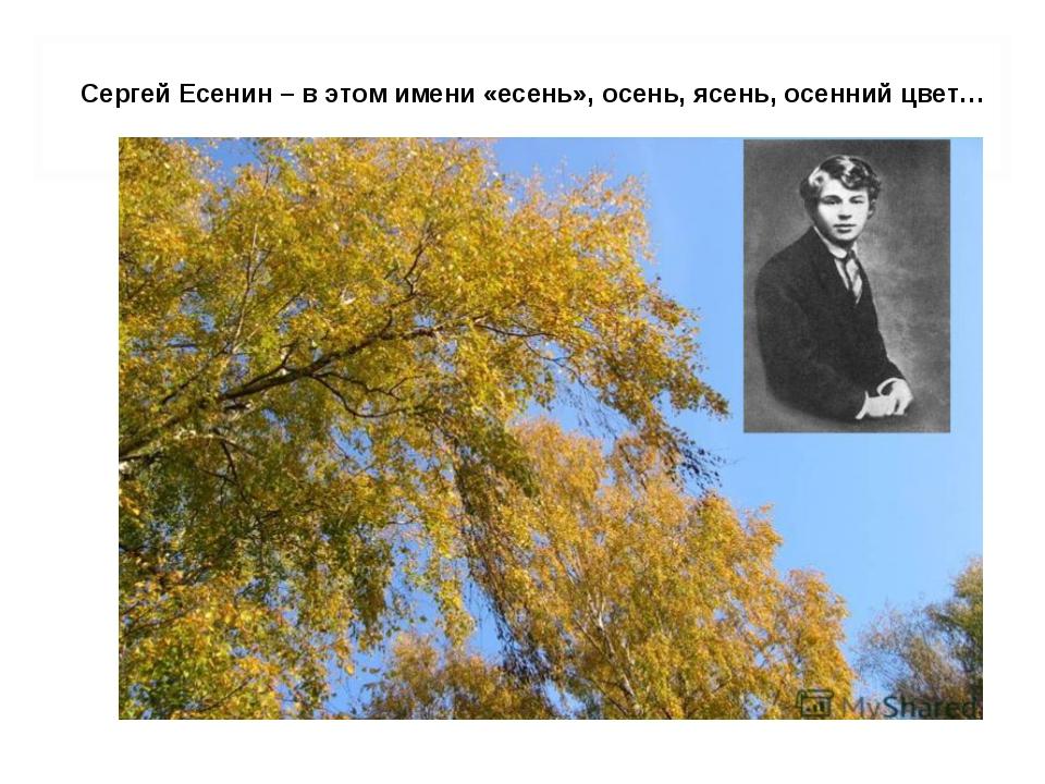 Сергей Есенин – в этом имени «есень», осень, ясень, осенний цвет…