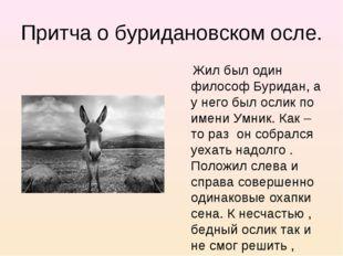 Притча о буридановском осле. Жил был один философ Буридан, а у него был ослик