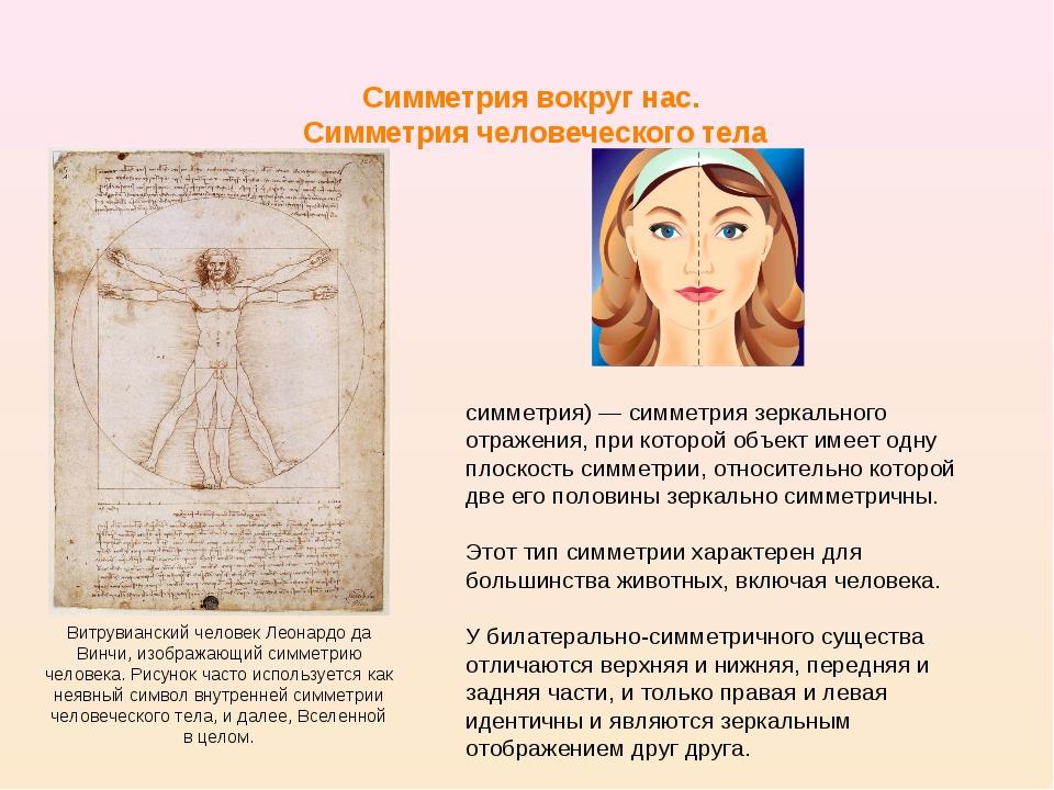 Симметрия вокруг нас. Симметрия человеческого тела Билатера́льная симме́трия...