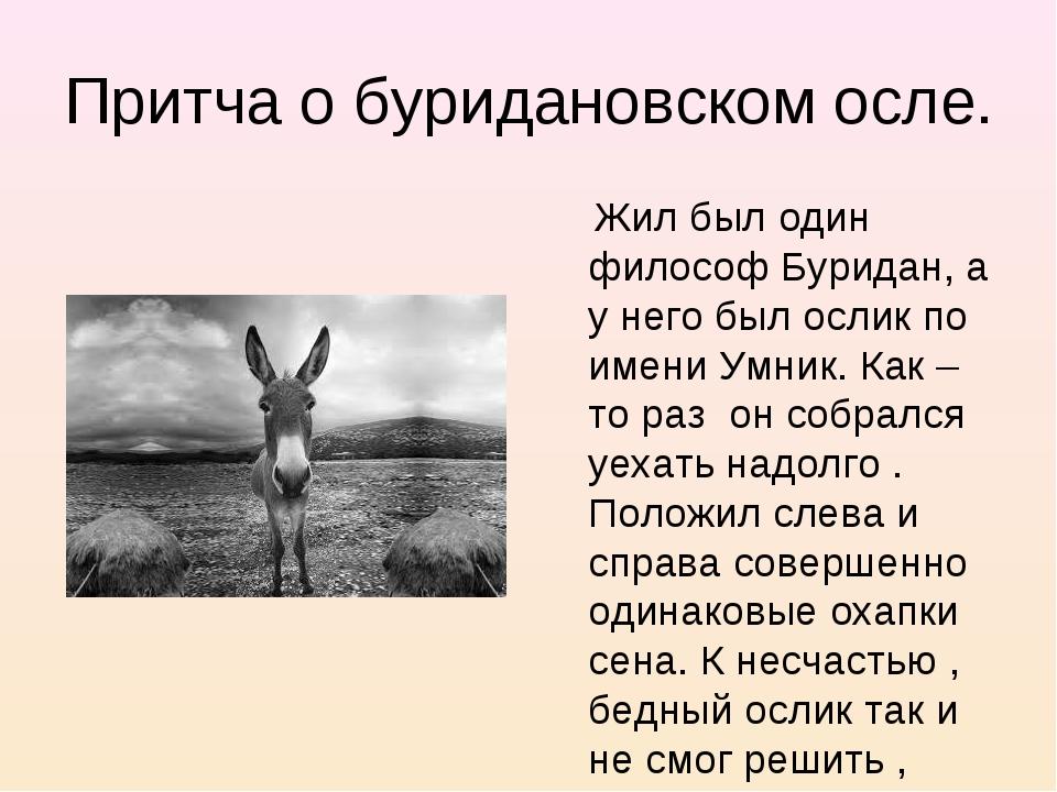 Притча о буридановском осле. Жил был один философ Буридан, а у него был ослик...