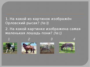 1. На какой из картинок изображён Орловский рысак?(№ 3) 2. На какой картинк