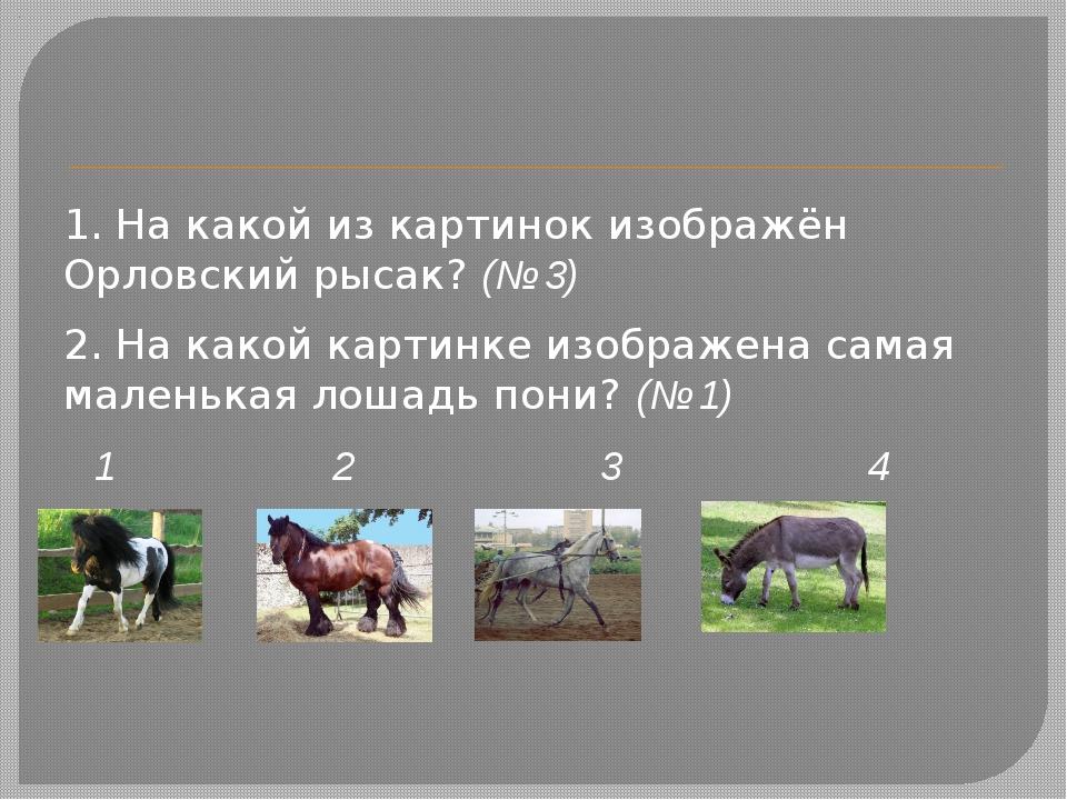 1. На какой из картинок изображён Орловский рысак?(№ 3) 2. На какой картинк...