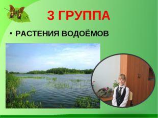 3 ГРУППА РАСТЕНИЯ ВОДОЁМОВ