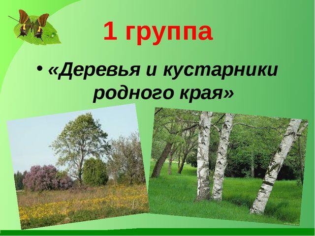 1 группа «Деревья и кустарники родного края»