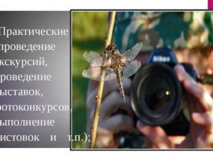 -Практические (проведение экскурсий, проведение выставок, фотоконкурсов, выпо