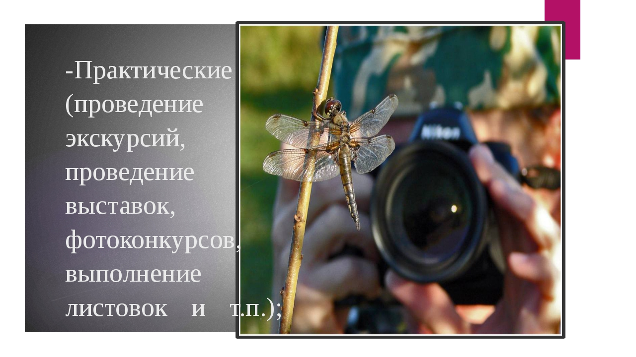 -Практические (проведение экскурсий, проведение выставок, фотоконкурсов, выпо...
