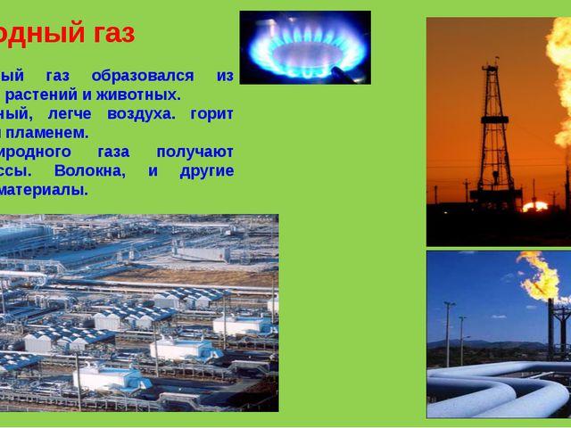 Природный газ Природный газ образовался из остатков растений и животных. Бесц...