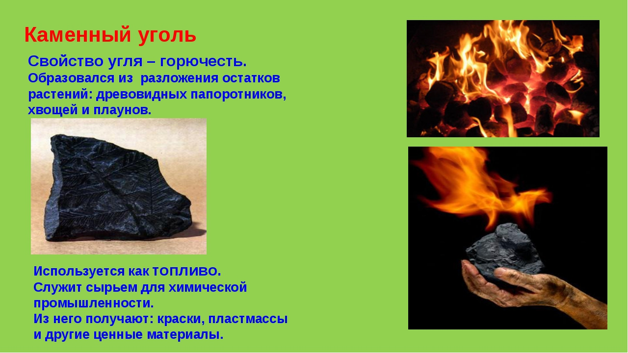 Каменный уголь Свойство угля – горючесть. Образовался из разложения остатков...